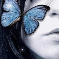 Аватар пользователя l-shapovalova