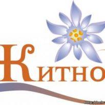 Аватар пользователя y-chumakov
