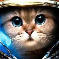 Аватар пользователя Sergey Bustrov
