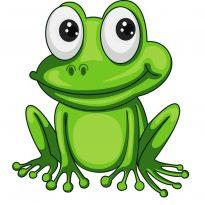 Аватар пользователя toad.fat