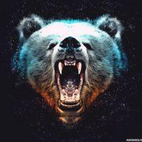 Аватар пользователя Aleksey13