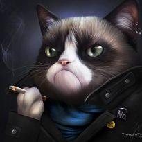 Аватар пользователя Drigor