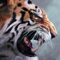 Аватар пользователя Temur
