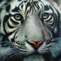 Аватар пользователя TigerMan
